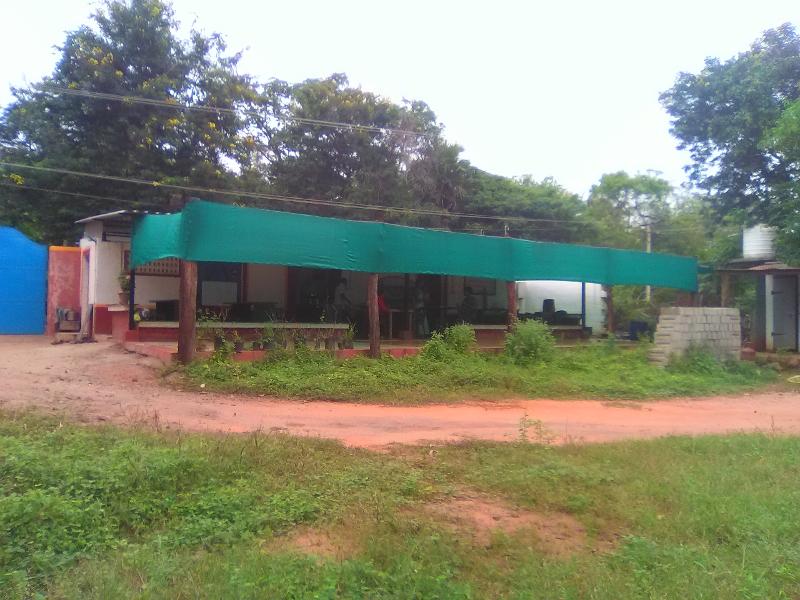 Sustenance Farm